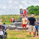 Burrs Berry Farm - Tire Hill